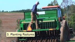 Planting Pastures