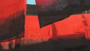 Sonus Dulcis Video